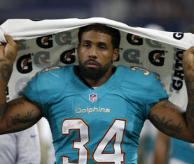 Arian Foster (AP Photo/Michael Ainsworth)