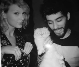 ZAYn Taylor Swift I Don't Wanna Live Forever Download