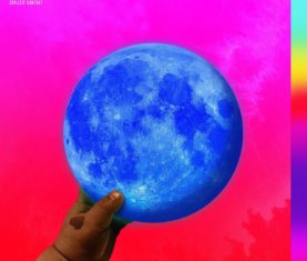 Wale Shine Album Cover